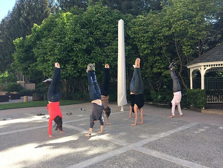 Handstands with my Gymnastics Teammates at Lindsey's Wedding - April 2014