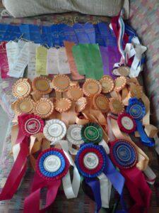 My gymnastics ribbons: 1992-1997.