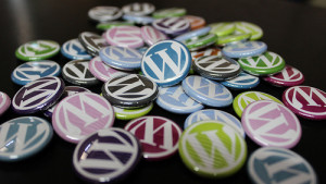WordPress Buttons by Alexander Grounder from Flickr (Creative Commons License)
