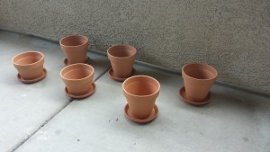 Six flower pots filled with possibilities - soon to be filled with dirt.