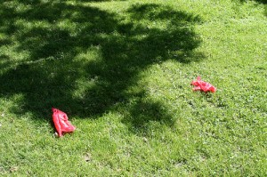 Dog poo bags by nicolasnova from Flickr