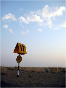no. 17, somewhere down the jaisalmer highway by nevil zaveri from Flickr